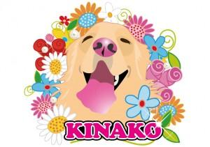 kinako3